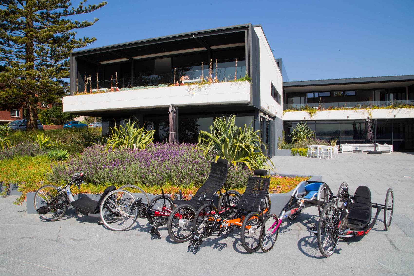 Sargood on Collaroy's adaptable cycles